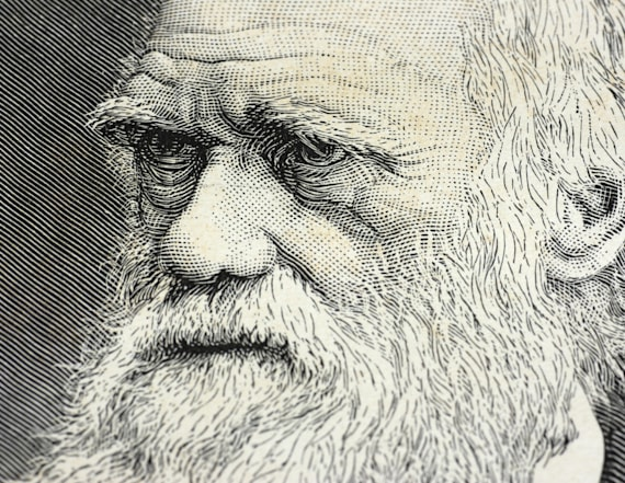Darwin's letter discussing God sells for huge sum
