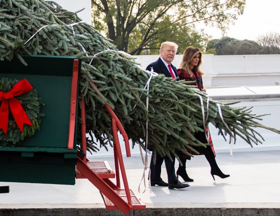 Trump, first lady accept White House Christmas tree