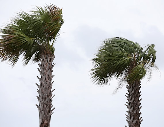 Barry crawls ashore, weakens to a tropical storm