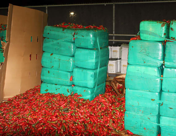 Nearly four tons of pot buried in jalapeños seized