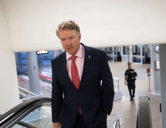 Rand Paul recovers from coronavirus