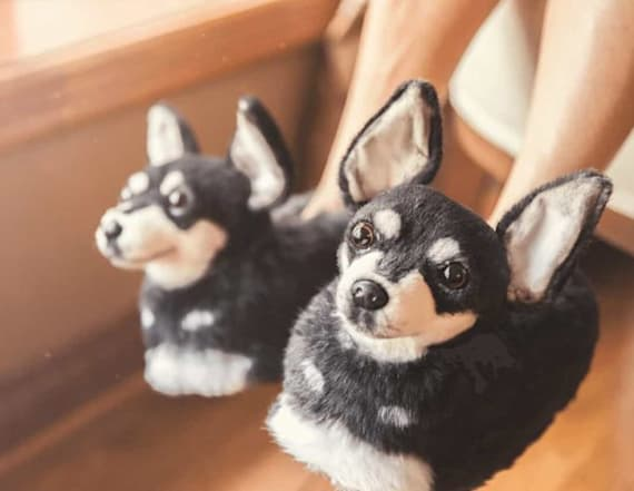 You can get slippers made to look just like your dog