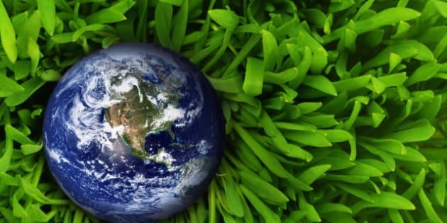 globe in fresh green grass....