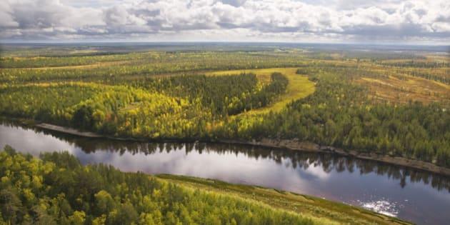 Autumn, taiga, Western Siberia.Khanty-Mansi Autonomous Area. Russia.