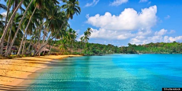paradise nature  sea water ...