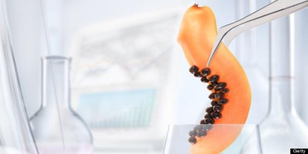 Papaya chemical research