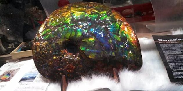Rocks And Gems Robbery Results In Stolen Ammolite (PHOTO)