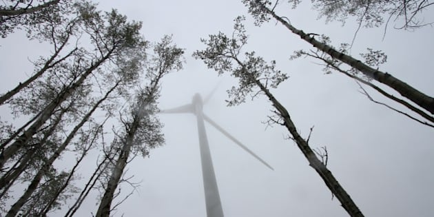 Photo David Dodge, Green Energy Futures Dawson Creek, BC