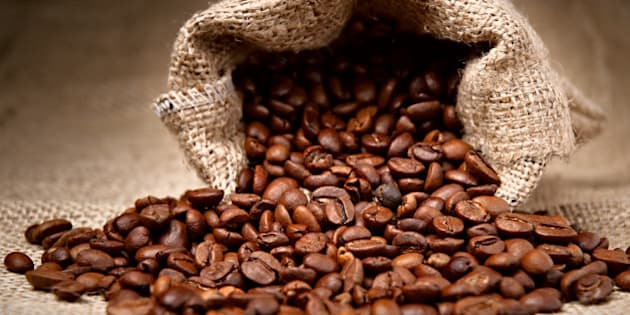 studio shot of coffee beans in...