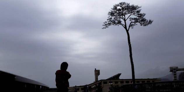 RIKUZENTAKATA, JAPAN - MARCH 11: A man looks at a single pine tree left standing after the March 11, 2011 tsunami swept away an entire forest, on March 11, 2012 in Rikuzentakata, Japan. People see the tree's miraculous survival as a symbol of hope and want to preserve it as a living monument. Today marks the one year anniversary of the 9.0 magnitude earthquake and tsunami that occured on March 11, 2011 and engulfed large parts of northeastern Japan. The number of dead and missing amounted to over 15,000 people.  (Photo by Chris McGrath/Getty Images)