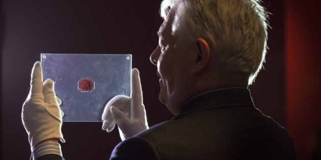 LONDON, ENGLAND - JUNE 02:  An employee of Sotheby's auction house holds a case containing the sole-surviving 'British Guiana One-Cent Magenta' stamp dating from 1856, on June 2, 2014 in London, England. The unique stamp is expected to fetch 20 million USD when auctioned in New York, USA on June 17, 2014. The stamp was initially discovered in 1873 by a 12-year old Scottish boy living in British Guiana, South America who sold it to a local stamp collector for several shillings.  (Photo by Oli Scarff/Getty Images)
