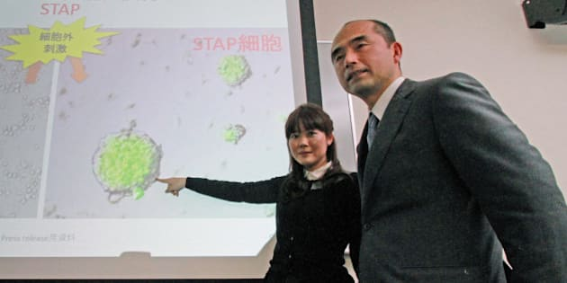 This photo taken on January 28, 2014 shows Japanese researcher Haruko Obokata (L) of the Japan-based Riken Institute and Yamanashi University professor Teruhiko Wakayama (R) displaying a picture of stem cells during a press conference at a Riken research center in Kobe, western Japan.  Wakayama, the co-author of a Japanese study that promised a revolutionary way to create stem cells, has called on March 11, 2014 for the headline-grabbing research to be retracted over claims its data was faulty.   JAPAN OUT    AFP PHOTO / JIJI PRESS        (Photo credit should read JIJI PRESS/AFP/Getty Images)