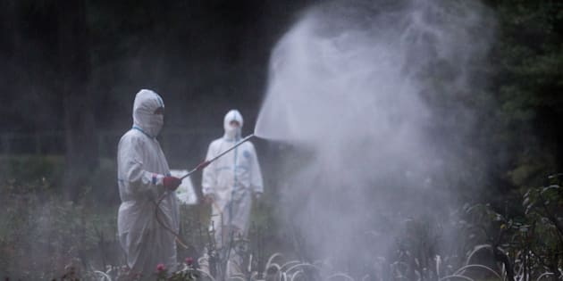 TOKYO, JAPAN - AUGUST 28:  Workers spray pesticide in Yoyogi Park on August 28, 2014 in Tokyo, Japan. Sections of Yoyogi Park were closed to the public today as they underwent  fumigation after three people were diagnosed with dengue fever after suffering mosquitoe bites in the park. According to a Health Ministry statement, these were the first domestic cases of dengue fever in Japan in 70 years.  (Photo by Chris McGrath/Getty Images)
