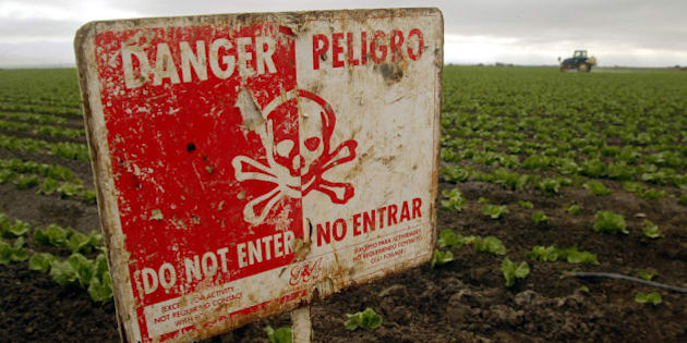 "A ""Do Not Enter"" sign marks a field of head cabbage during the spraying of pesticides near Chualar, Calif., Monday, Sept. 16, 2002.  State reports of pesticide poisonings among farmworkers are declining, but labor advocates say that tougher state laws and more enforcement are needed to adequately protect the people picking and packing crops. (AP Photo/Mike Fiala)"