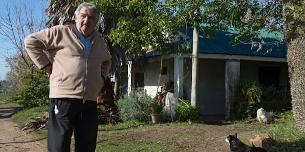 Uruguayan President Jose Mujica is seen at the garden of his house on the outskirts of Montevideo, after an interview with Agence France-Presse on July 9, 2014. Mujica told AFP Wednesday that sales of marijuana will be delayed until next year because of difficulties in implementing the controversial law legalizing the drug. The South American country in December became the first in the world to announce that it would regulate the market for cannabis and its derivatives, a bold move by authorities frustrated with losing resources to fighting drug trafficking. Direct marijuana sales to consumers will 'go to next year,' Mujica, 79, said in an interview with AFP. 'There are practical difficulties.'      AFP PHOTO / Daniel CASELLI        (Photo credit should read DANIEL CASELLI/AFP/Getty Images)