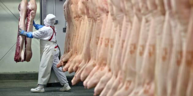 A worker handles animal carcasses at the Doly-Com abattoir, one of the two units checked by Romanian authorities in the horse meat scandal, in the village of Roma, northern Romania, Tuesday, Feb. 12, 2013. On Monday, Romanian officials scrambled to defend two plants implicated in the scandal, saying the meat was properly declared and any fraud was committed elsewhere. (AP Photo/Vadim Ghirda)