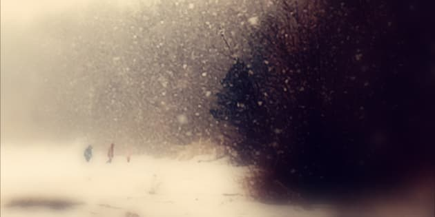 A winter walk in the falling snow, along the shores of the Great Lake Huron.