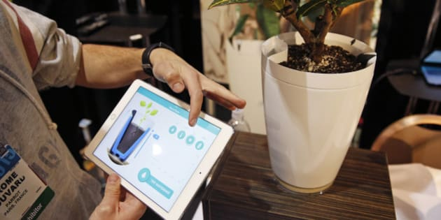 Jerome Bouvard demonstrates the Parrot Pot at CES Unveiled, a media preview event for CES International, Sunday, Jan. 4, 2015, in Las Vegas. The pot is linked to mobile devices and will automatically water your plant. (AP Photo/John Locher)