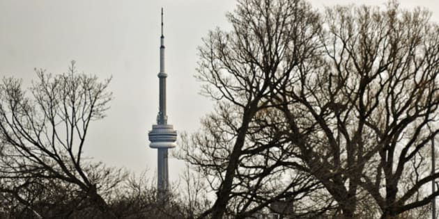 TORONTO, ON - JANUARY 19: Trees frame the CN Tower Saturday January 19, 2012.  TARA WALTON/ TORONTO STAR        (Tara Walton/Toronto Star via Getty Images)