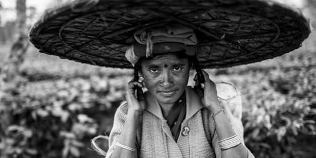 [UNVERIFIED CONTENT] portrait of the woman Tea picker with the big hat near Dibrugarh, Assam, India