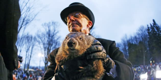 Groundhog Club handler Ron Ploucha holds Punxsutawney Phil, the weather prognosticating groundhog, during the 129th celebration of Groundhog Day on Gobbler's Knob in Punxsutawney, Pa. Monday, Feb. 2, 2015. Phil saw his shadow, predicting six more weeks of winter weather. (AP Photo/Gene J. Puskar)