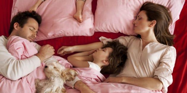 family sleeping dog bed bedroom