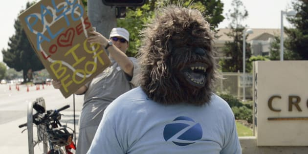 FILE - In this Friday, Aug. 15, 2008 file photo, taken in Palo Alto, Calif.,  a man in an ape costume is seen outside a hotel where a media conference is held announcing the claim that a deceased bigfoot or sasquatch creature has been found in Georgia.  DNA testing is taking a bite out of the Bigfoot legend. After scientists analyzed more than 30 hair samples reportedly left behind by Bigfoot and other related beasts like Yeti and almasty, they found all of them came from more mundane animals like bears, wolves, cows and raccoons. In 2012, researchers at Oxford University and the Lausanne Museum of Zoology issued an open call asking museums, scientists and Bigfoot aficionados to share any samples they thought were from the mythical ape-like creatures. They tested 36 hair samples using DNA sequencing; the hairs came from Bhutan, India, Indonesia, Nepal, Russia and the U.S. All of the samples tested had a 100 percent match to a known animal. Most were from bears, but there were also hairs from a Malaysian tapir, horses, porcupine, deer, sheep, and a human.  (AP Photo/Ben Margot, File)