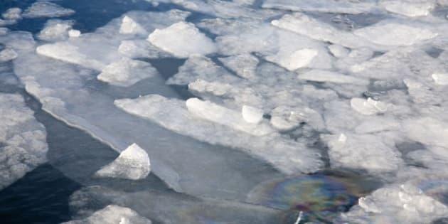 Norway, Kirkeness, near to the Russian border Fiord Frozen water