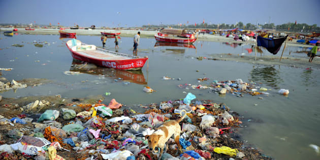 A dog scavenges in the polluted waters of the Ganga river at Sangam in Allahabad on April 14, 2013.   AFP PHOTO/ SANJAY KANOJIA        (Photo credit should read Sanjay Kanojia/AFP/Getty Images)