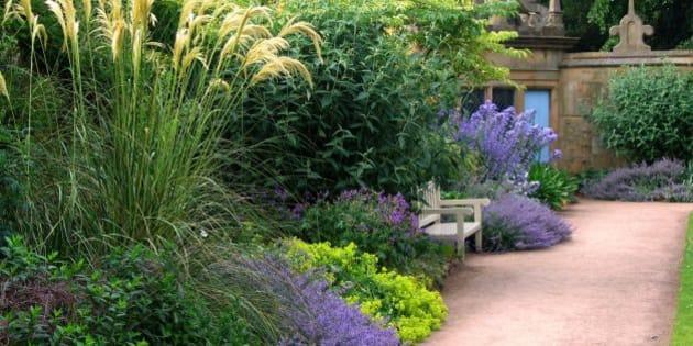 Comment désherber son jardin sans produits chimiques