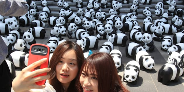 SEOUL, SOUTH KOREA - MAY 23:  People take a 'selfie' photograph near Pandas on May 23, 2015 in Seoul, South Korea. The project now newly renamed as '1600 PANDAS+' is a collaboration which began in 2008 between WWF-France and artist Paulo Grangeon, who handcrafted 1600 pandas, visualizing the number of existing pandas left in the wild with recycled materials to make papier-mache sculptures. The new name '1600 PANDAS+' refers not only to the increase in the population of wild giant pandas to over 1,800 in the past decade, but also to the increased public awareness of wildlife conservation. After ruling nearly 100 exhibitions around the world, the pandas will land in Korea for the first time.  (Photo by Chung Sung-Jun/Getty Images)