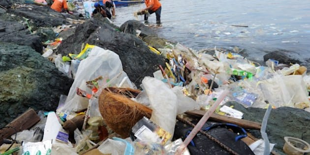 Plastic bags and other rubbish are collected from the waters and shoreline of Manila Bay on July 3, 2014 during a campaign by environmental activists and volunteers calling for a ban of the use of plastic bags. Volunteers from various environmental advocates collected and separated assorted plastic rubbish polluting Manila Bay and called for national legislation against plastic bags in observance of the 5th International Plastic Bag-Free Day on July 3.     AFP PHOTO / Jay DIRECTO        (Photo credit should read JAY DIRECTO/AFP/Getty Images)