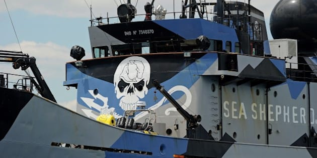 The ship 'Steve Irwin' from the fleet of environmental activist group Sea Shepherd sits at anchor in Gage Roads off Fremantle near Perth on December 7, 2011. Australia said on December 7 it had rejected a call from Japan to provide more security for its whaling fleet in Antarctic waters, the site of violent clashes with animal rights activists in previous years. The Japanese fleet left port Tuesday on the country's annual hunt and activists with the militant Sea Shepherd Conservation Society, who plan to harass the whalers, said they were preparing to join them within days.   AFP PHOTO / Greg WOOD (Photo credit should read GREG WOOD/AFP/Getty Images)