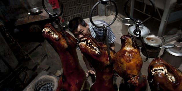 A Chinese vendor waits for customers as he hangs up cooked dogs at his stall in Yulin, in southern China's Guangxi province on June 21, 2015.  The city holds an annual festival devoted to the animal's meat on the summer solstice which has provoked an increasing backlash from animal protection activists.      CHINA OUT    AFP PHOTO        (Photo credit should read STR/AFP/Getty Images)