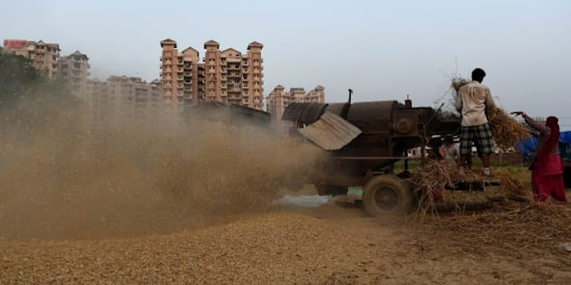 Indian farmers work in a field as they seperate husk from harvested wheat grains by using a harvestor machine in Faridabad, a suburb of New Delhi on April 30, 2015. AFP PHOTO/MONEY SHARMA.        (Photo credit should read MONEY SHARMA/AFP/Getty Images)