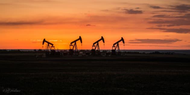 Pump jacks on the Albertan prairie.
