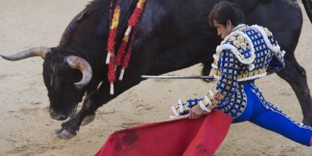 Mexican-born bullfighter Joselito Adame baits a bull during a corrida at Madrid's Las Ventas arena, Friday, May 16, 2014, as part of the celebration for Madrid's patron saint San Isidro. (AP Photo/Domenico Stinellis)