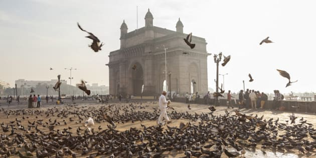 Pigeons, India Gate, Colaba, Mumbai (Bombay), India