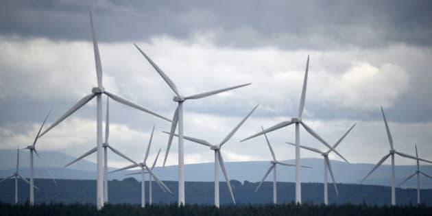 再生可能エネルギー企業の幹部は、下落する原油価格を心配していない なぜなら......