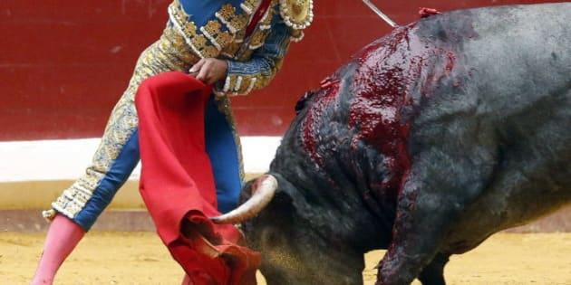 El viral testimonio de un técnico de sonido sobre las corridas de toros