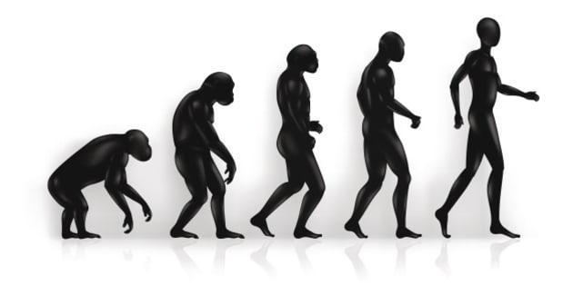 Origin of man, Vector Illustration