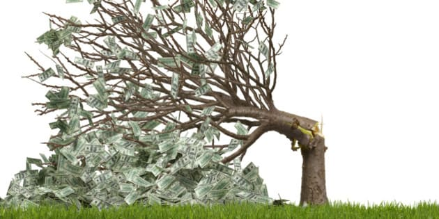 Money tree snapped over with money falling to the ground, US currency