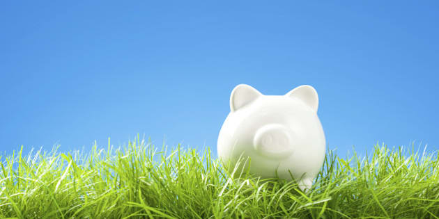 White Piggy Bank in Grass, Blue Sky and Copy Space