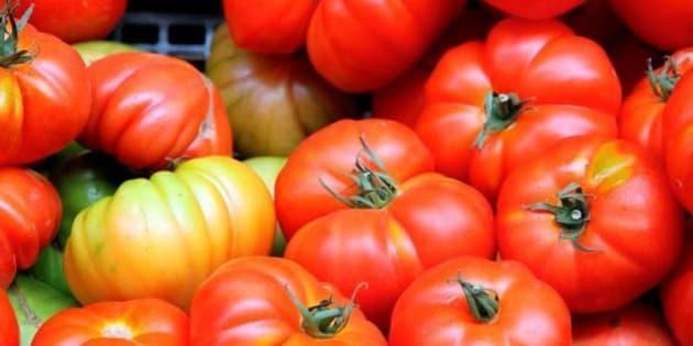 Pomodori cinesi made in Italy  importiamo 155mila tonnellate di concentrato  fatto con ortaggi marci e contaminati (FOTO) 429603e556d6