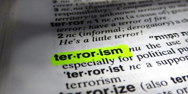 Dictionary definition of terrorism
