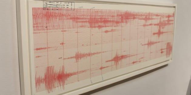 Hoja de sismógrafo original del sismo del 19 de septiembre de 1985. UNAM. Museo de la Ciudad de México, septiembre de 2015.