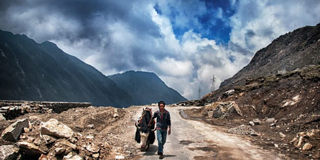 Yak and local man of Sikkim in a mountain