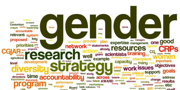 A 'tag cloud' snapshot of terms used most in a CGIAR Gender & Diversity e-consultation as of 24 Aug 2011 (illustration credit: Nancy White).