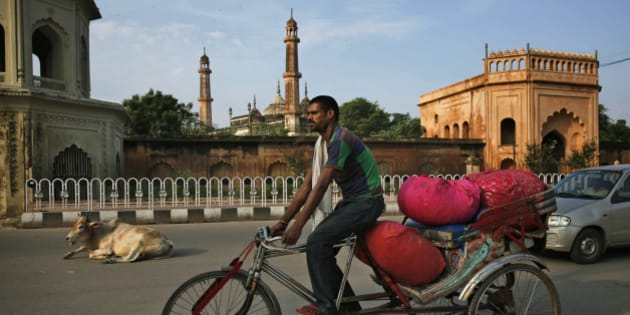 An Indian rickshaw driver carries sacks of flowers as he rides past a cow sitting on a road in Lucknow, India, Wednesday, Aug. 12, 2015. (AP Photo/Rajesh Kumar Singh)