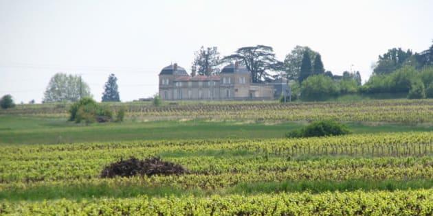 Un domaine du beaujolais